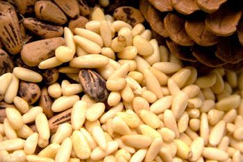 Кедровые орехи от давления