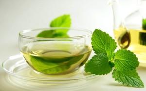 Можно ли использовать чай с мелиссой во время беременности