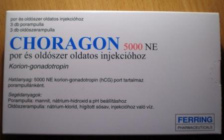 Хорагон. Лечение бесплодия