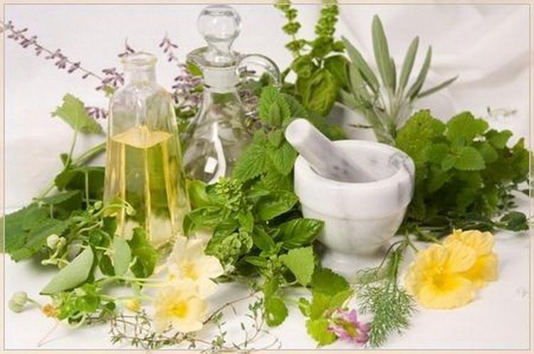 Лечение лекарственными травами