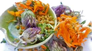 Преимущества лечения лекарственными травами