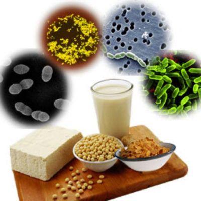 Причины и профилактика дисбактериоза