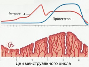 Возможные причины нарушений гормонального фона