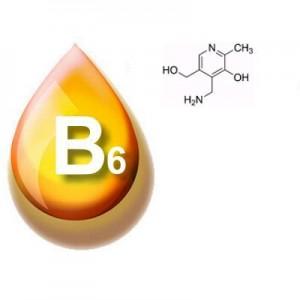 Описание и действие витамина В6