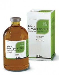 Фармакологическое действие камфоры и области применения