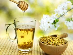 Рецепты народной медицины от бронхита