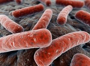 Как происходит заражение туберкулезом