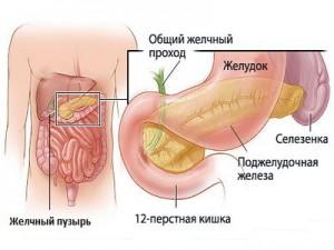 Симптомы воспаления желчного пузыря