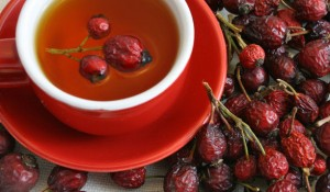 Вкусный и полезный отвар из ягод