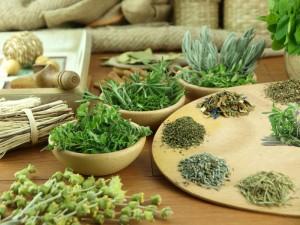 Лекарственные травы помогут снизить вес