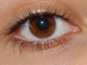 Глазные капли Лакрисин отлично себя зарекомендовали в том случае, если у человека наблюдается раздражение глаз, которые могут быть вызваны такими факторами как дым, пыль, ветер, холод, соленая вода, солнце
