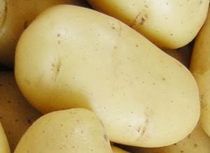 Чтобы снять боль, возникающую при наличии наружных узлов, к больному месту необходимо приложить сырую свеклу, натертую на терке. Либо в виде свечи может быть использован сырой картофель.