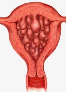 Во время менструации более всего работает верхний функциональный слой эпителия, который играет важную роль в нормальной жизни женщины