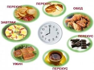 Человеку творческому и/или с высокой умственной нагрузкой нужно хорошее потребление глюкозообразующих компонентов в часы работы