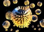 Ротавирус у взрослых: причины, диагностика, симптомы, лечение