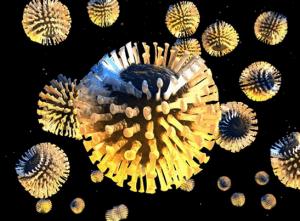Вирус - причина заболевания