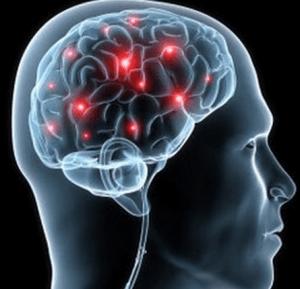Мозг нуждается в постоянном притоке крови