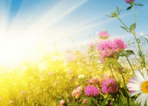 Солнце может стать причиной ожога сетчатки