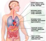 Синдром Стилла у взрослых: особенности развития, течения и лечения болезни