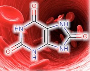 Мочевая кислота в кровеносной системе