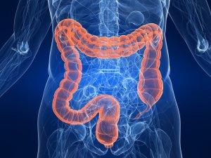 Отсутствие тонуса в кишечнике