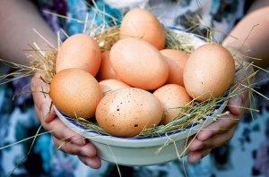 Как высчитать грамм белка в яйце?