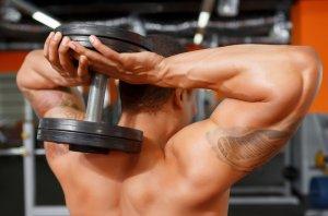 Трехглавая мышца трицепс