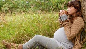Снятие раздражительности с помощью трав в момент беременности