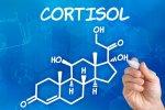 Кортизол — гормон смерти, так ли это
