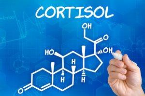 Кортизол участвует в стрессовых ситуациях