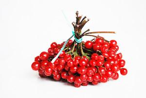 Плоды калины очень полезны для сердечно-сосудистой системы