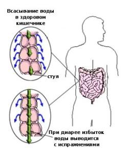 Не следует пренебрегать медицинской помощью в случае, если понос начался после употребления в пищу грибов
