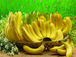 Сколько белков в банане и является ли он диетическим фруктом