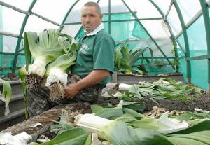 Гигантские овощи для мужчин