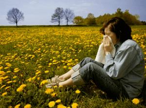 Аллергия на пыльцу цветущих растений
