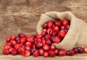 Лекарственные свойства болотной ягоды