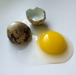 Улучшение кожи благодаря перепелиным яйцам