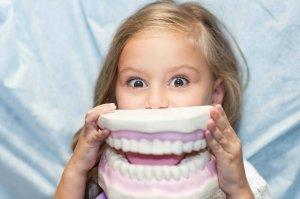 Постоянные и «детские» зубы